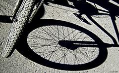 Juego de Sombras. (Orcoo) Tags: shadow blackandwhite bw byn blancoynegro wheel bicicleta sombra rueda orcoo oswaldoordoez