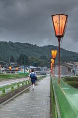 Going Home (MikeMcGeePhoto) Tags: trees sky lake grass rain japan garden nikon sigma overcast rainy toyama hdr yatsuo owara yatsuomachiprefecture