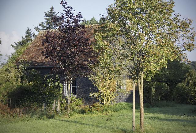 Le Château - annex - 478