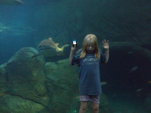 camden_aquarium 116