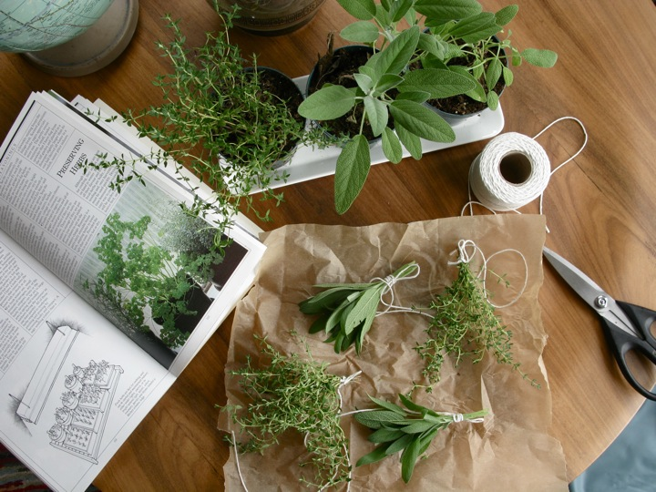 drying herbs sage thyme 005