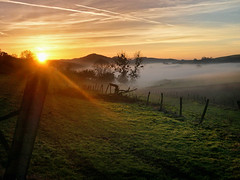 Licht und Nebel (composingfun) Tags: sky color nature fog digital germany landscape nikon nebel natur coolpix landschaft 4300 cloudssunbeams