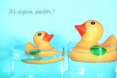 al agua patos !!! (Maril Irimia) Tags: duck nikon niceshot ducks colores pato patos alaguapatos mygearandme marilirimia blinkagain marilirimiafotografa duckstowater