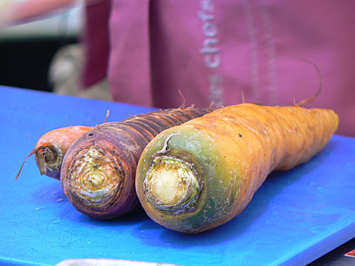 carottes anciennes.jpg