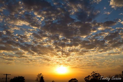 Golden Sunrise 21-09-11 2