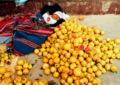 bb au milieu des fruits de la passion bolivie (ichauvel) Tags: baby southamerica market bolivia bb bolivie amriquedusud mach fruitsdelapassion