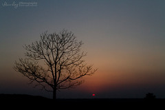 Sunset (Rhivu_Ray) Tags: travel sunset sky copyright india color art nature beauty canon landscape photography eos asia earth fairy 7d 1855mm westbengal naturescape kharagpur naturewallpaper indianlandscape bestofindia eos7d canoneos7d bestofcanon landscapesofindia paschimbanga rhivu rhivuray landscapeofwestbengal rhitamvarray rhivuphotography