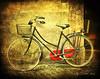 Bicycle (osolev) Tags: italy bike bicycle europa europe italia bicicleta lucca bici toscana velo texturas italie textured ltytr1 osolev tatot