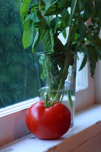Tomatoes and basil