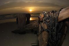 Naples Beach (sandrokoster.com) Tags: county wood light sunset sea usa sun beach water night collier mexico dawn sand warm gulf pentax florida dusk flash shell wave fisheye everglades naples k20d