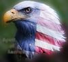 Spirit of America (Chandler Photography) Tags: bird america photoshop eagle map spirit flag patriotic oldglory displacement cs5