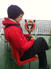 sock knitting on the ferry