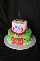 "owl with tree branch birthday cake • <a style=""font-size:0.8em;"" href=""http://www.flickr.com/photos/60584691@N02/6183906118/"" target=""_blank"">View on Flickr</a>"