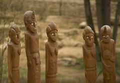 Devn kmen / Wooden Tribe (Jiri Volejnik) Tags: sculpture penis zoo wooden african carving tribe devo zlin stipa zln kmen lesna drevo ezba len tpa devo ezba
