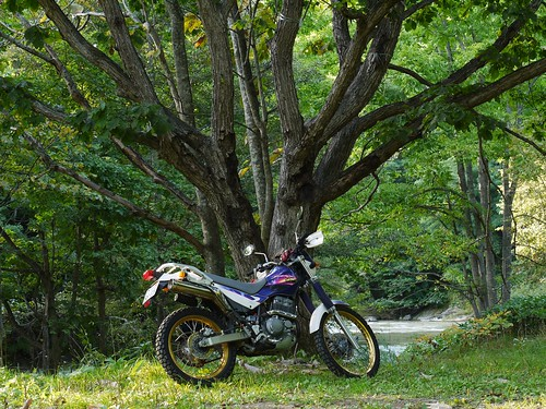 P1010389 - 2011-09-25 16-01-48