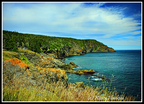 Rocky Shores and Sweeping Sky by Nancy Hawkins