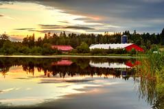 Peaceful Harmony (Northern Straits Photo) Tags: sunset red canada reflection reeds nikon colours bc britishcolumbia farm vancouverisland duncan cowichanvalley d700 douganlake blinkagain northernstraitsphotography