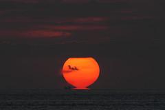 [フリー画像] 自然・風景, 夕日・夕焼け・日没, 海, 201110011900