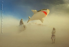 Burning Man 2011 fishing flying sharks in dust storm (Dust To Ashes) Tags: pictures party people sculpture kite man art dusty by photography shark pier flying photo fishing desert photos nevada picture surreal playa next burningman nv blackrockcity burning ashes installation brc theme ash dust reno winds duststorm bruno sculptures ales summervacation gerlach installations ritesofpassage 2011 summerfestival desertparty burningmanart burningmanfestival dusttoashes wwwdusttoashesnet burningman2011 bm2011 desertlandscapape