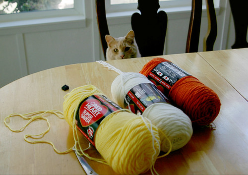 gather yer yarn