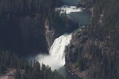 Yellowstone River Upper Falls (JackSilver) Tags: waterfall aerial yellowstone wyoming yellowstoneriver yellowstonepark
