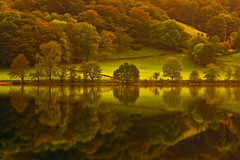 Autumn Reflection - Grasmere (Explored) (Steve Thompson images) Tags: autumn lake reflection green landscape grasmere lakedistrict cumbria hdr polarisingfilter canon1585lens