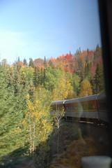 DSD_7688 (Greying_Geezer) Tags: autumn ontario canada fall colors colours scenic trains autumncolours railways railroads saultstemarie on algoma agawacanyon traintour