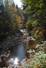 DSD_7754 (Greying_Geezer) Tags: autumn ontario canada fall colors colours scenic trains autumncolours railways railroads saultstemarie on algoma agawacanyon traintour