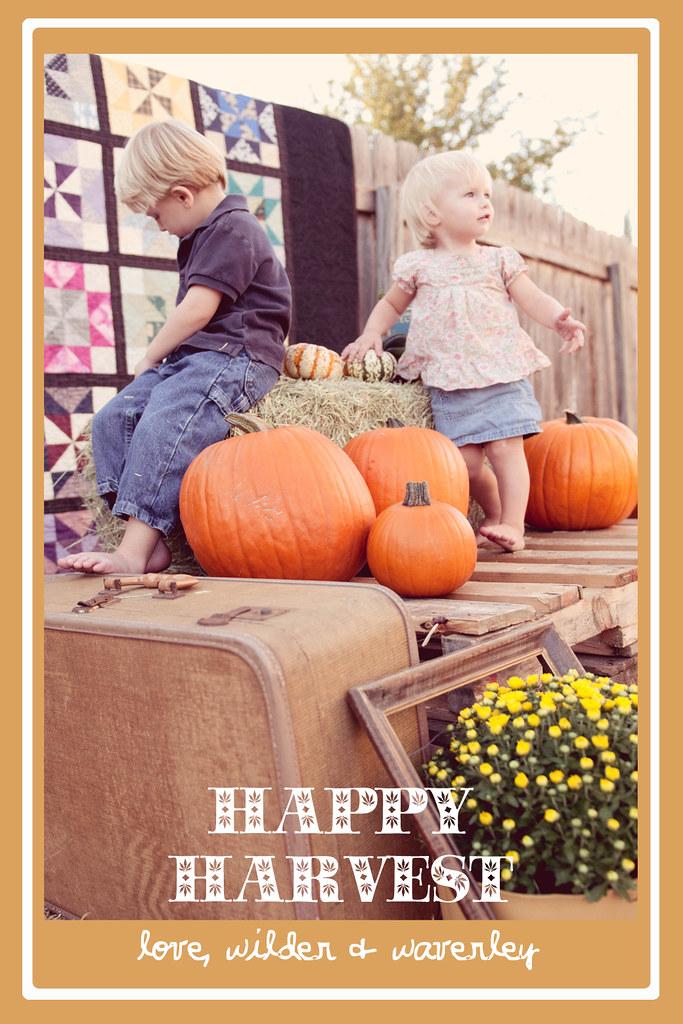 Happy Harvest6