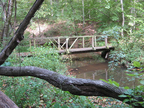 Bridge on the Townsend Trail