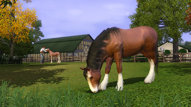 The Sims 3 Pets Clydesdale Horse