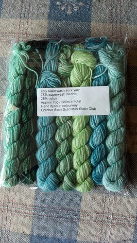October Semi Solid Mini Skein Club