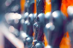 Bokeh fence (Steve-h) Tags: pink blue ireland dublin orange sun sunlight white macro sunshine canon fence garden lens grey bokeh handheld lightroom steveh canoneos5dmk2 canonef100mmf28lmacroisusm mygearandme mygearandmepremium mygearandmebronze mygearandmesilver mygearandmegold musictomyeyeslevel1