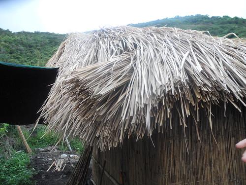 達魯岸由取自於自然的原始材料製作而成,第一步就是學習採集。