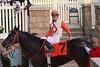 2011-10-05 (227) r9 Forest G. Boyce on #7 So Best (JLeeFleenor) Tags: marylandracing laurelpark horses jockeys thoroughbredracing marylandjockeyclub laurelracecourse photo photography photos winner girls femme frau vrouw donna lamujer thoroughbreds caballo cheval faras hest hevonen each alogo soos kuda gigi cavallo uma pfeerd koin حصان кон cavalo 马 konj häst άλογο סוס घोड़ा 馬 koń лошадь laurel laurelparkracecourse laurelracetrack ma maryland