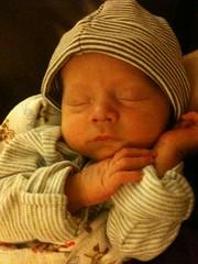 New Baby Leo
