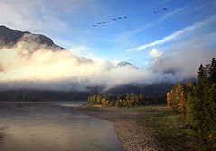 Morning on the Fraser (justb) Tags: morning autumn trees light sunset cloud sun mountain canada mountains tree fall water colors clouds creek canon silver river landscape hope town flying geese colorful bc view flock flight peak ridge flowing fraser mountainous macleod townsite justb 40d isolillock