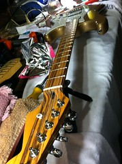 count rostov (Two Bears) Tags: raw grover stratocaster electricguitar headstock zebrawood warmoth tigerwood goncaloalves