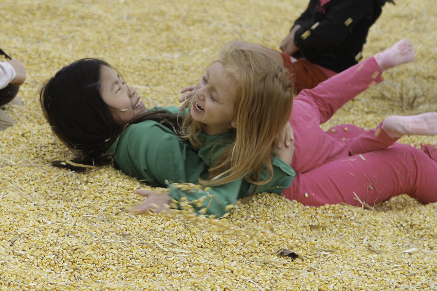 corn pit laughing