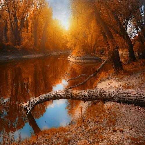 autumn in the air - EXPLORED 10/09/11