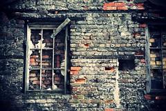 window (siteless) Tags: old windows red urban building brick abandoned broken window wall architecture antique empty belfast frame cracked windowframe external forgotton