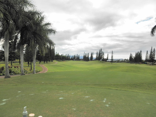 WAIKELE COUNTRY CLUB 029