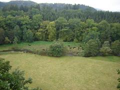 Blick in das Grenzbachtal