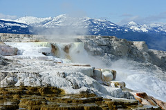 Mammoth Hot Springs (bhophotos) Tags: travel usa nature water landscape geotagged nikon yellowstonenationalpark yellowstone wyoming hotsprings ynp thermals mammothhotspring canaryspring d700 70200mmf28gvrii