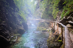 Vintgar Gorge (whitworth images) Tags: bridge mist green nature water beautiful misty creek river wooden stream europe peaceful nobody clean clear slovenia walkway stunning bled flowing elevated emerald vintgargorge gorenjska