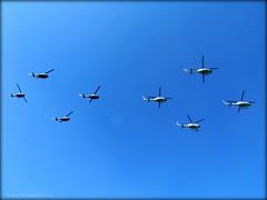 FORMACIN HELICOPTEROS BELL (Pablo C.M || BANCOIMAGENES.CL) Tags: chile bell bell412 fach fuerzaaerea helicopteros fiestaspatrias uh1h paradamilitar2011
