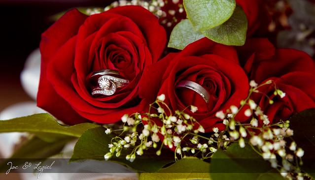 Roses + Rings