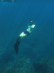 IMG_2927 (d3_plus) Tags: snorkeling freediving izu g12   hirizo   canonpowershotg12 is04