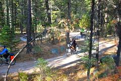 South Fork Salmon Touring (Doug Goodenough) Tags: south fork salmon touring bicycle bike ride cycle gravel dirt climb mountain pass canyons idaho jen steve scott panniers camping doug goodenough douggoodenough drg53111p drg53111psalmon 2011 september sept salsa fargo gunner waterford mccall yellowpine drg53111psalmonday4 drg531
