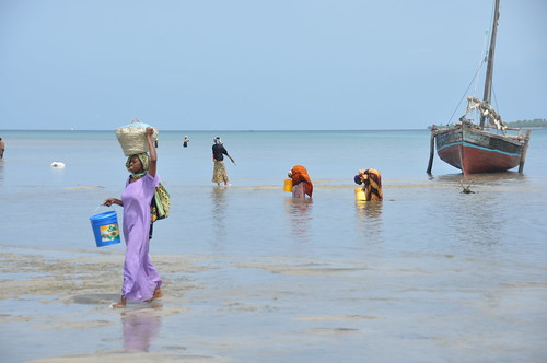 Mkokotoni at low tide